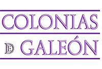 Visita a Bodega Colonias Galeón